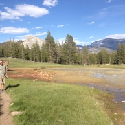 Tuolumne Meadows, Yosemite