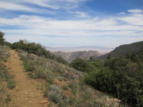 I see the desert!